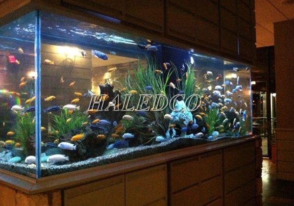 Đèn led trang trí bể cá cảnh trong nhà