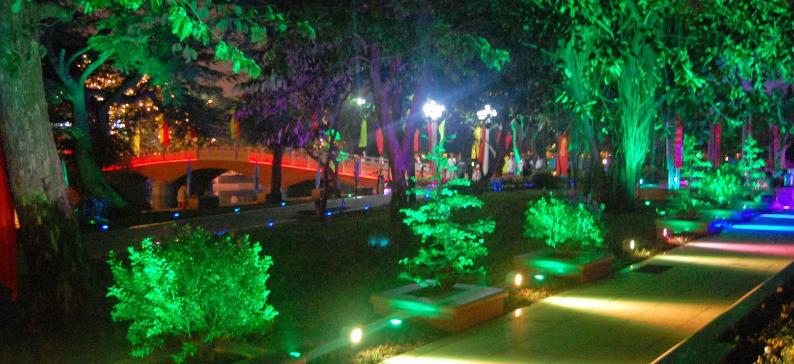 Ứng dụng đèn LED chiếu cây