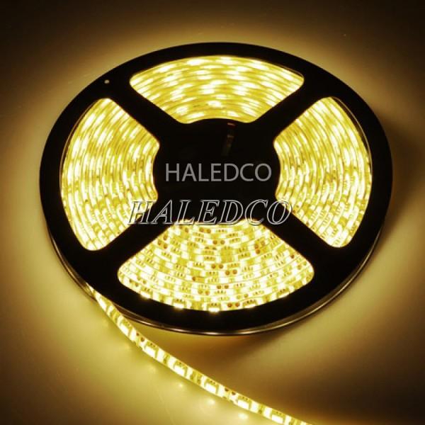 Đèn LED dây trang trí