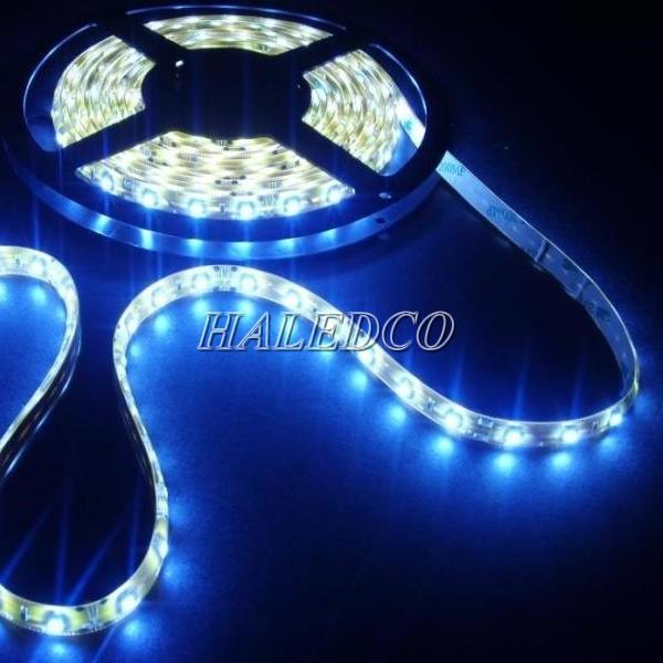 Kích thước đèn led dây 5050