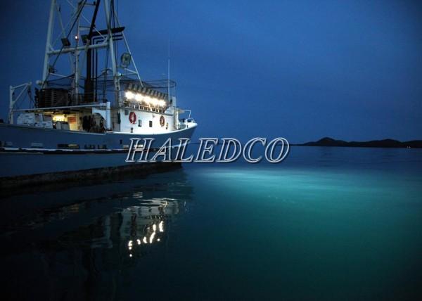 Ứng dụng chiếu sáng của đèn pha led HLFL11-300w