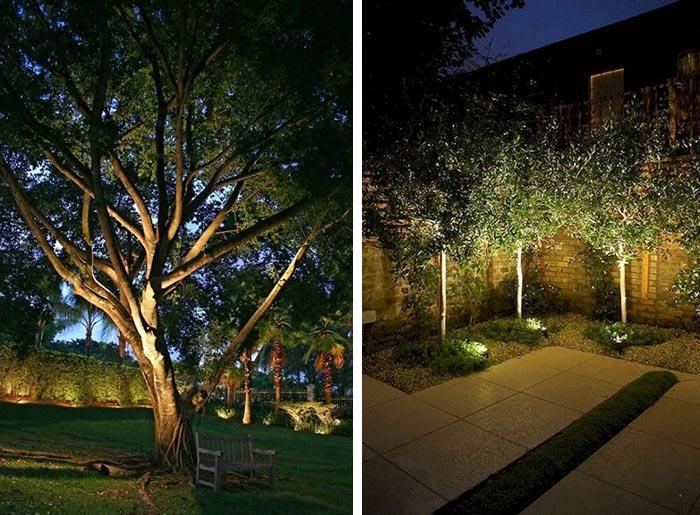 Bố trí đèn LED chiếu cây kiểu ánh trăng