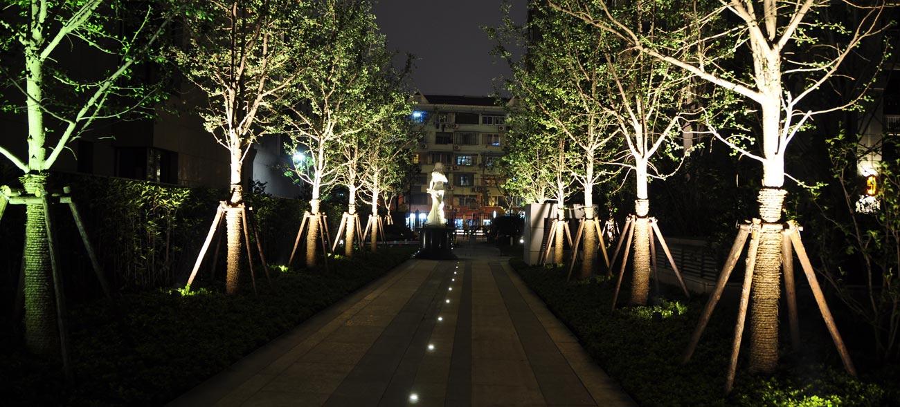 Bố trí đèn LED hắt cây theo lối đi