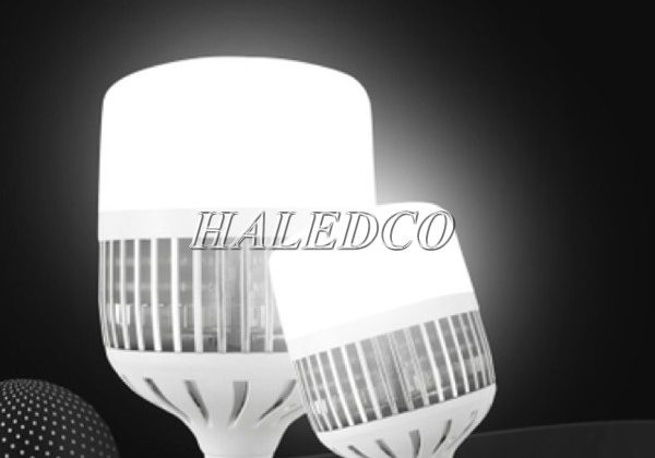 TOP 7 bóng đèn LED siêu sáng 50w bán chạy nhất – giá 2021