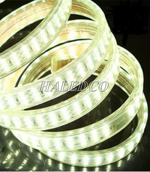 Đèn LED dây 3 hàng bóng cho ánh sáng tỏa đều