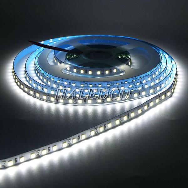 Đèn LED dây 12V IP65