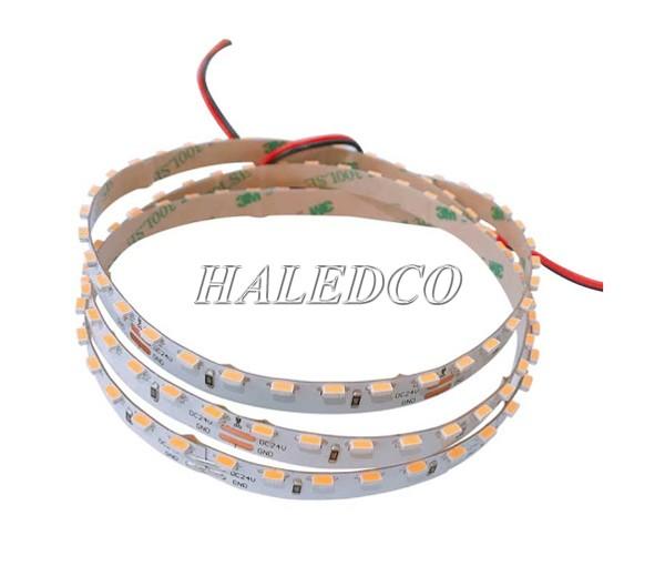 LED dây 4000K 24V