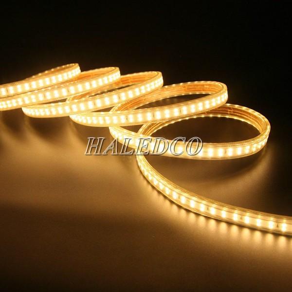 Đèn LED dây màu vàng hai hàng bóng