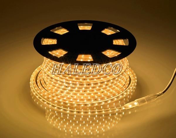 Đèn LED dây màu vàng 5050 220V