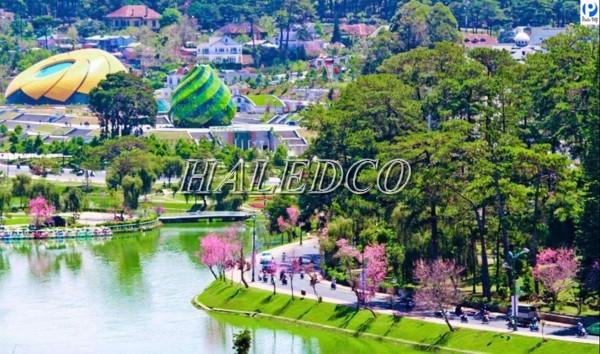 Tư vấn và cấp đèn chiếu sáng công viên quanh Hồ Xuân Hương TP. Đà Lạt